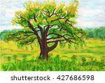 hand painted picture... | Shutterstock . vector #427686598