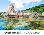 beautiful colorful tropical... | Shutterstock . vector #427719340