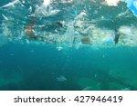 plastic rubbish pollution in... | Shutterstock . vector #427946419
