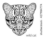 the black and white wild cat... | Shutterstock .eps vector #427984774