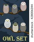 set of flat owls | Shutterstock .eps vector #428006344