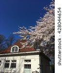 tea house  blossom tree | Shutterstock . vector #428044654