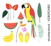summer tropical graphic... | Shutterstock .eps vector #428092480