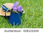 Summer Garden Image Of Purple...