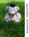 Small photo of Teddy bear graduate bachelor's degree .Teddy bear wear academic gown with garden background. Teddy bear hide and seek behind the tree. peek a boo teddy bear