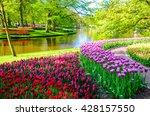 Blooming Flowers In Keukenhof...
