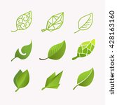 set of vector images of leaves... | Shutterstock .eps vector #428163160