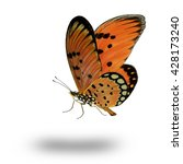 Stock photo beautiful towny coster butterfly flying up acraea violae 428173240