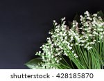 lily of the valley on dark... | Shutterstock . vector #428185870