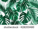 Stock vector tropical palm leaves jungle leaves seamless vector floral pattern background 428203480