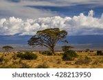 Beautiful African Landscape On...