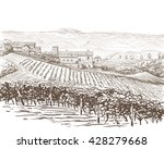 vineyard landscape vector... | Shutterstock .eps vector #428279668
