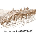Vineyard Landscape Vector...