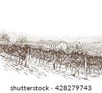 vineyard landscape vector... | Shutterstock .eps vector #428279743