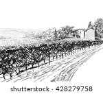 vineyard landscape vector... | Shutterstock .eps vector #428279758