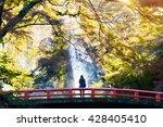 Minoh Waterfall In Autumn...