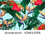 parrots  exotic birds  tropical ... | Shutterstock .eps vector #428414398