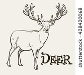 Deer Deer Drawing Mule Deer...