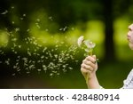 girl blowing a dandelion | Shutterstock . vector #428480914