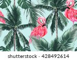 pink flamingos  exotic birds ... | Shutterstock .eps vector #428492614
