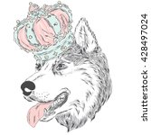 husky in the crown . vector... | Shutterstock .eps vector #428497024