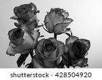 Black And White Rose Flowers O...