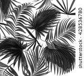 Black Leaves Of Palm Tree On...