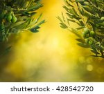 olives background. olives on... | Shutterstock . vector #428542720