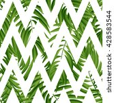 tropical palm leaves tropic... | Shutterstock .eps vector #428583544