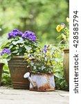 outdoor gardening pots and...   Shutterstock . vector #428585794