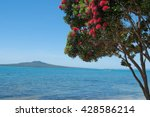 Pohutukawa Tree In Bloom With...