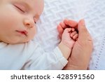 closeup of a baby hand in... | Shutterstock . vector #428591560