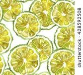 bergamot citrus fruit section... | Shutterstock . vector #428592508