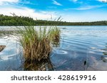 beautiful lake  summer landscape | Shutterstock . vector #428619916