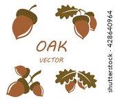 oak in flat style. isolated... | Shutterstock .eps vector #428640964