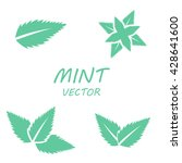 mint in flat style. isolated... | Shutterstock .eps vector #428641600