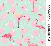 flamingo bird background.... | Shutterstock .eps vector #428899990