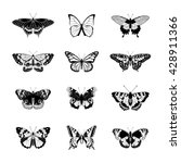 Stock vector set of butterflies butterfly isolated on white background butterflies silhouettes vector 428911366