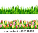 set of seamless borders with... | Shutterstock .eps vector #428918134