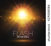 elegant transparent flash.... | Shutterstock .eps vector #429008584