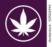 white marijuana leaf icon in... | Shutterstock .eps vector #429026944