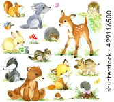 Cute Forest Animals Set....