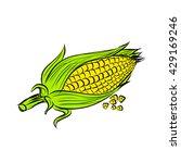 Vector Corn On The Cob