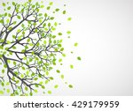 abstract nature background.... | Shutterstock .eps vector #429179959