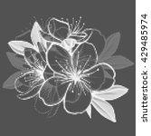 decorative floral illustration... | Shutterstock .eps vector #429485974