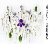 Stock photo pattern with purple iris and lily of the valley flowers on white background flat lay top view 429493183