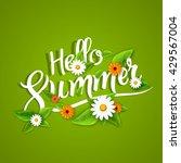 hello summer lettering... | Shutterstock .eps vector #429567004