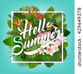 hello summer typographical... | Shutterstock .eps vector #429649378