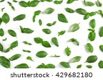 fresh basil leaves on white... | Shutterstock . vector #429682180