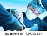 veterinarian surgery in... | Shutterstock . vector #429703639